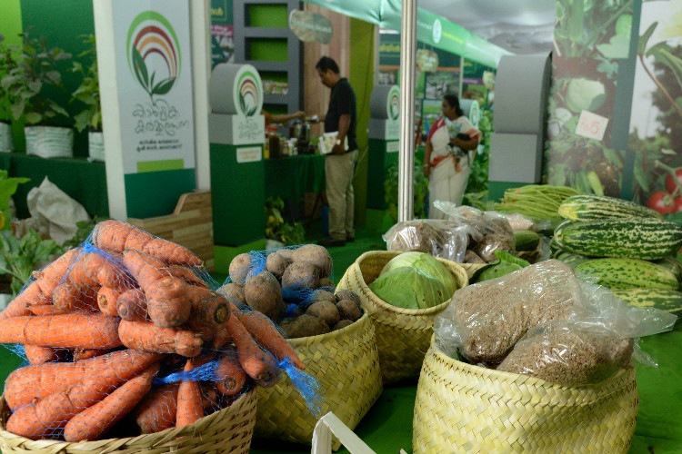 The Passing Of Years However Saw It Shift Its Focus To Cash Crops Thereby Making Eventually Dependent On Tamil Nadu And Karnataka For Vegetables