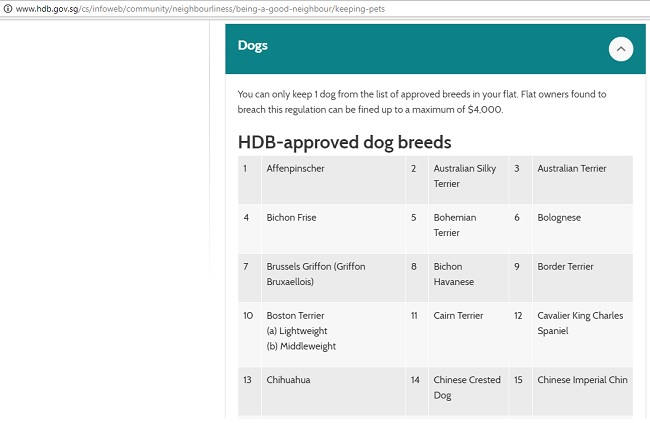 BBMP's 'approved' dog breeds list makes no sense, and is eerily
