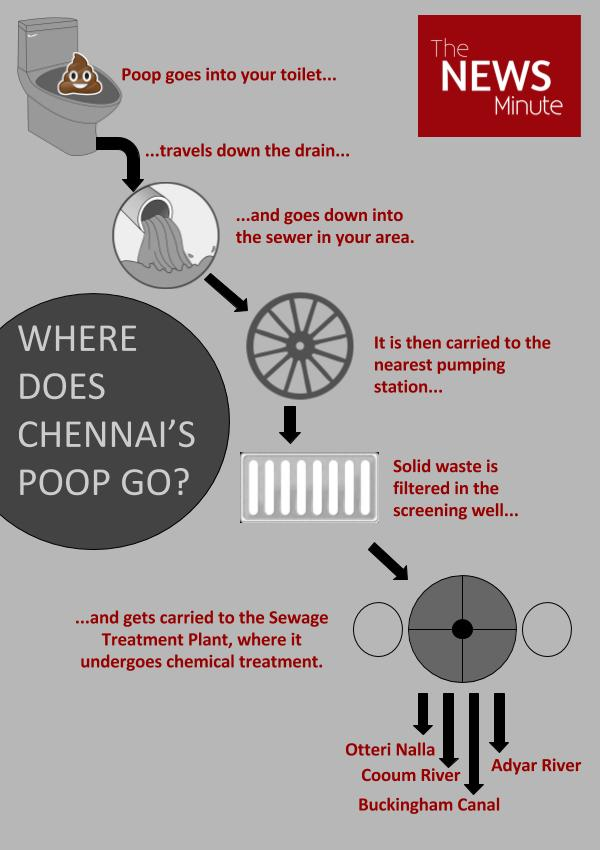 Where does Chennai's poop go? The stinking truth | The News