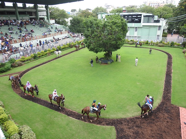 horse race betting in hyderabad secunderabad