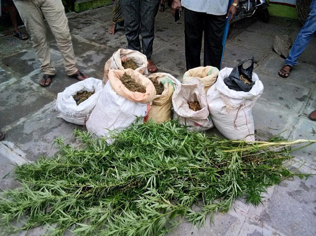 This Telangana village has been growing and selling ganja for