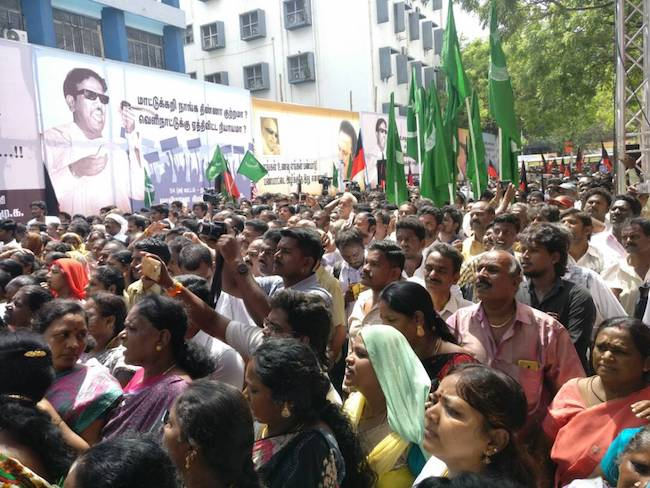 DMK stages protest agaist cattle salughter ban