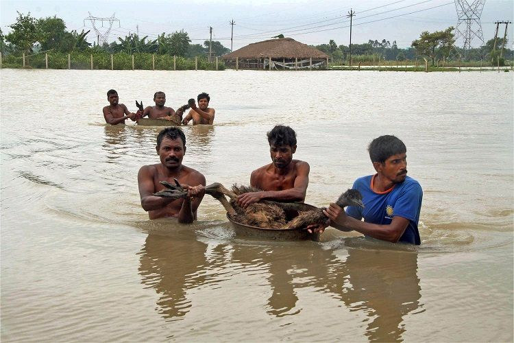 devastating flood pakistan essay Essay on flooding 719 words 3 pages  the most important ones grew along the indus river in pakistan the nile in egypt the yellow river in china and the tigris and euphrates in the middle east  flooding in mississippi in the summer of 1993 the united states were faced with the most devastating flood that has ever occurred seventeen.