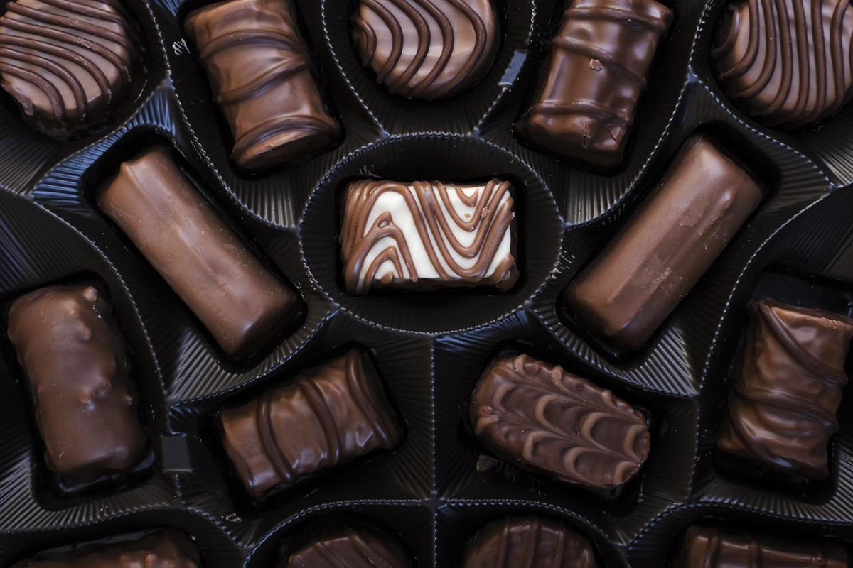 First chocolate park to come up in Dakshina Kannada district of Karnataka