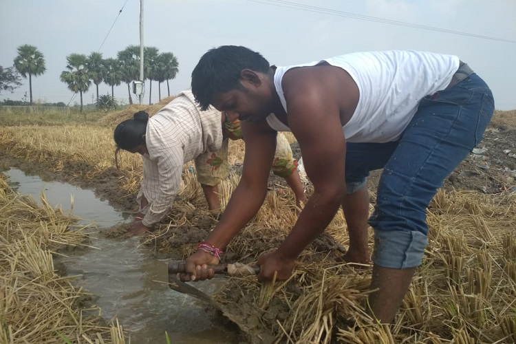 Ground report: Why not make Rythu Bandhu a subsidy scheme, ask Telangana farmers