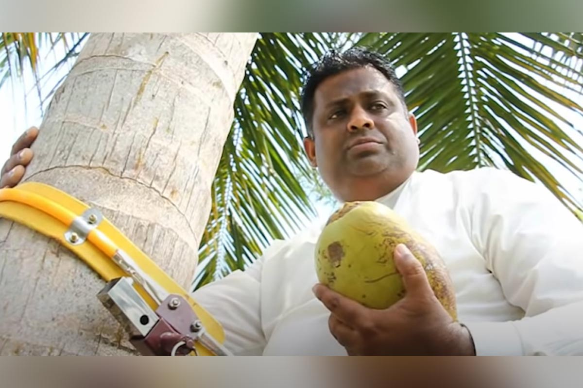 Watch: Sri Lankan Minister holds press conference atop a coconut tree