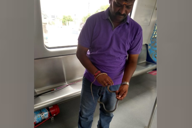 Snake caught on board Hyderabad Metro train after 5-day search