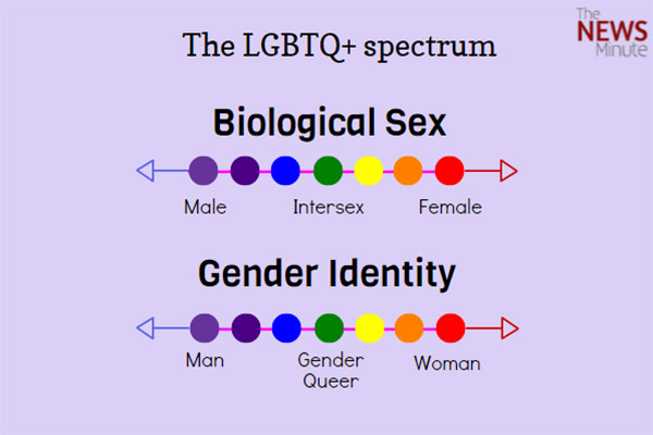 Sexual orientation non binary