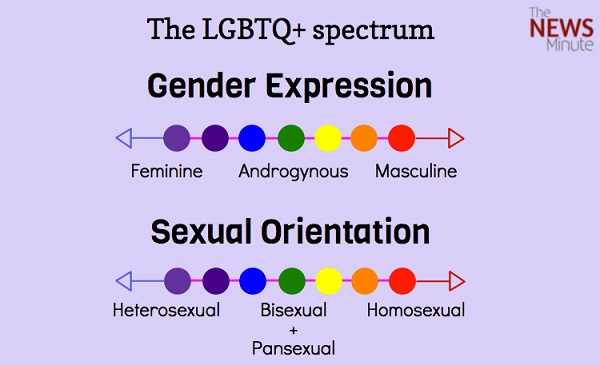 Cool sexual orientation