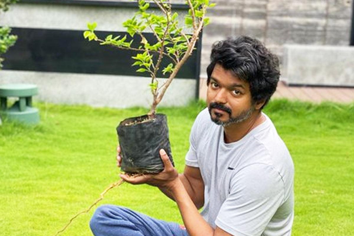 Vijay responds to Mahesh Babu's Green India Challenge, plants sapling
