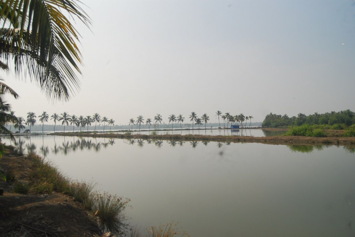 From Mullaperiyar dam to sand mining: A history of the slow death of Kerala's rivers