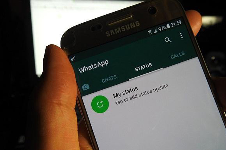 WhatsApp starts rolling out hide mute status updates, Facebook Pay on its beta app