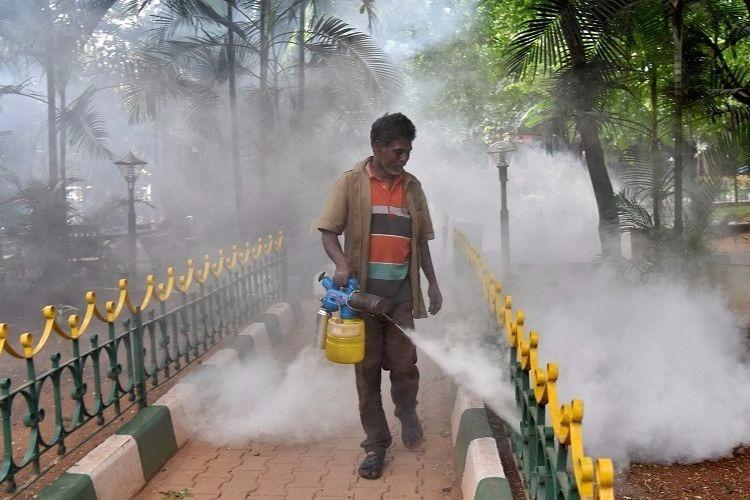 Why officials in Hyderabad are using 'banned' pesticide DDT for mosquito control