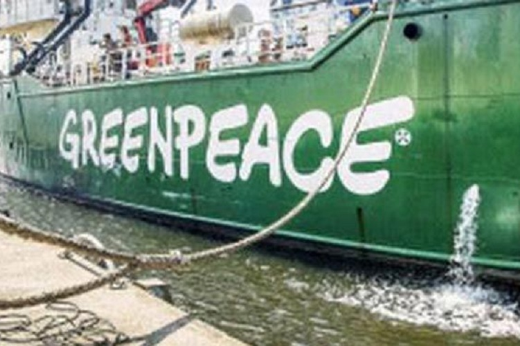 Karnataka High Court quashes ED freeze on Greenpeace bank accounts