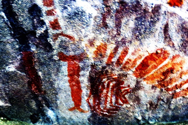 Rare prehistoric rock art uncovered in Telangana's Kothagudem