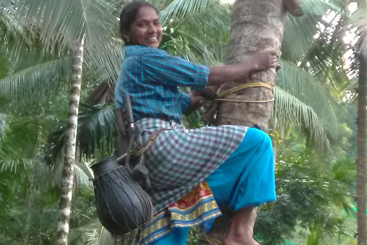 Meet Sheeja, Kerala woman who became a toddy tapper to support her family