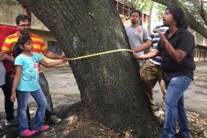 Bluru residents turn up in large numbers to make tree census in Indiranagar a hit