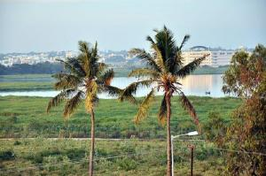 Bellandur lake fine NGT dismisses Karnataka governments plea to reverse NGT order
