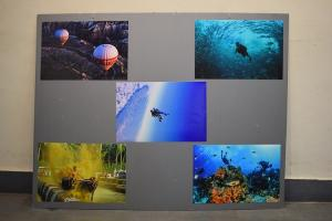 Scuba diving in Malaysia Kambala race in Mangaluru This photo exhibition has it all