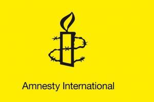 Amnesty wants human rights protection in Karnataka poll manifestos