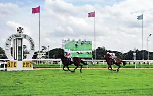 Cancel Bangalore Turf Club license turn it into green space Ktaka govt committee