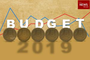 What Karnataka govt startups farmer leaders and others expect from Union Budget 2019