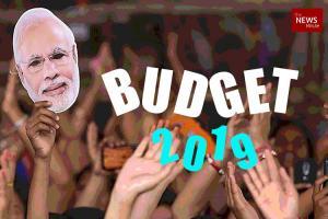 Interim Budget 2019 Farmers may get interest-free loans premium-free insurance