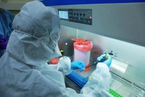 17 more samples test negative for Nipah Kerala Health Minister