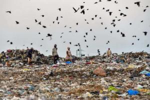 Shift dumping ground in Chennais Perungudi and Alandur Madras HC
