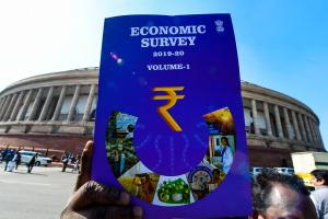 Opinion Economic Survey has been reduced to a ritual