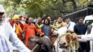 Karnataka govt to withdraw cases against cow vigilantes