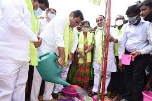 220 crore saplings planted in Telangana in six years KTR on Haritha Haram