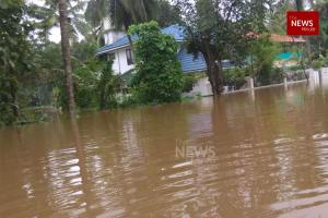 Kerala govt sets up team to assess biodiversity loss on account of floods