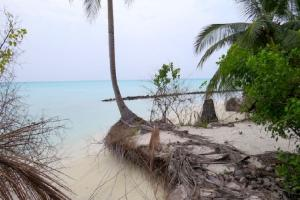 Will Lakshadweep islands survive climate change