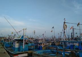 Kochi coast human trafficking case One more person taken into custody
