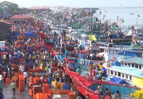 Why traditional fishermen in Ktaka are against the use of LED lights in fishing