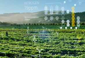 Microsoft India is using AI sensors to make farming and healthcare smart