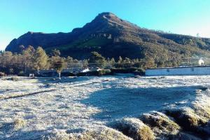 Keralas Munnar sees sub-zero temperatures tourists flock to frost-covered town