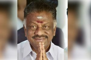 Talks are on O Panneerselvam confirms amidst speculation of poll tie-up with BJP
