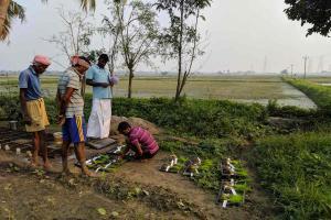 Kaatu Yaanam to Ratha Sali TN foundation conserves 156 varieties of native paddy species