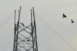 Bengaluru to face power cuts on September 14 Full list of areas