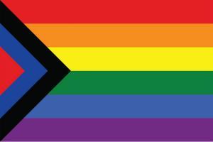 LGBTQ meets caste politics Social justice pride flag at Chennai Queer LitFest