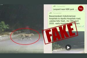 TNM Fact Check A leopard was not seen near Hyderabads KBR park