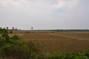 Centre gives Rs 949 cr aid to drought-hit Karnataka