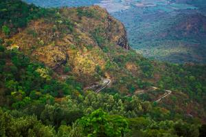From trekking trails to scenic views visit Yercaud to be close to nature