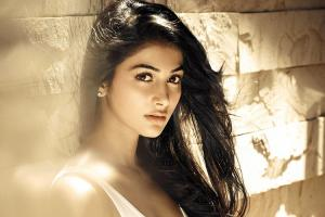 Pooja Hegde to play female lead in Valmiki