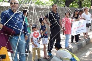 NGT stays Bengaluru steel flyover for four weeks asks BDA to respond