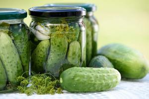 In a pickle The rise and decline of Karnatakas massive global gherkin industry
