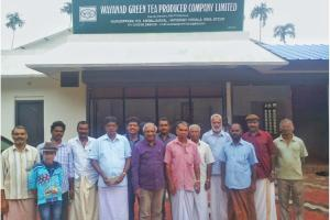 How tea growers in Wayanad joined hands to fight exploitation by middlemen