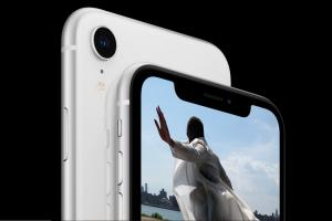 iPhone XRs single lens camera is a delight for low-light photography Experts